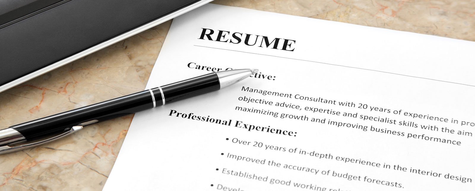 Professional resume services online erie pa